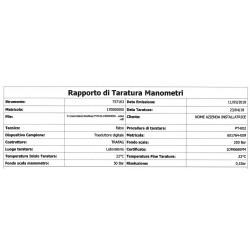 Rapporto Taratura Manometro - Esempio - Instality utensili professionali